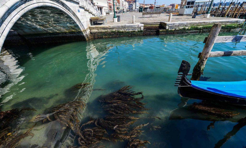 תעלות ונציה